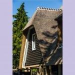 Huisbouw Groot Koolwitje detail riet