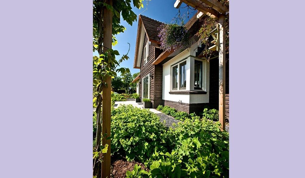 Huis-bouwen-wit-gekeimd-douglas-delen